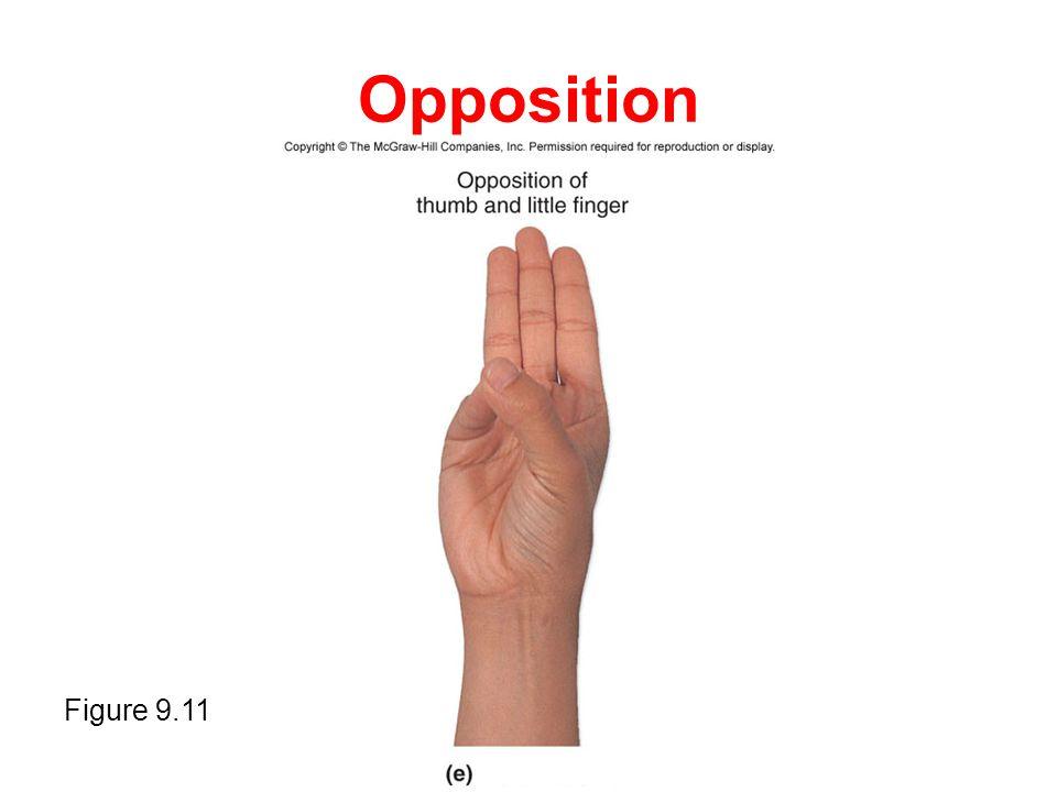 Opposition Figure 9.11