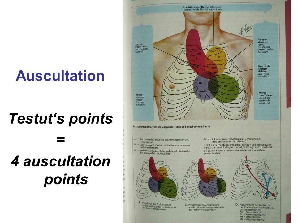 Auscultation Testut's points = 4 auscultation points