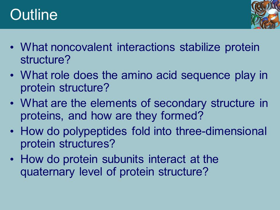 Denaturation Leads to Loss of Protein Structure and Function Proteins can be denatured by heat, with commensurate loss of function.