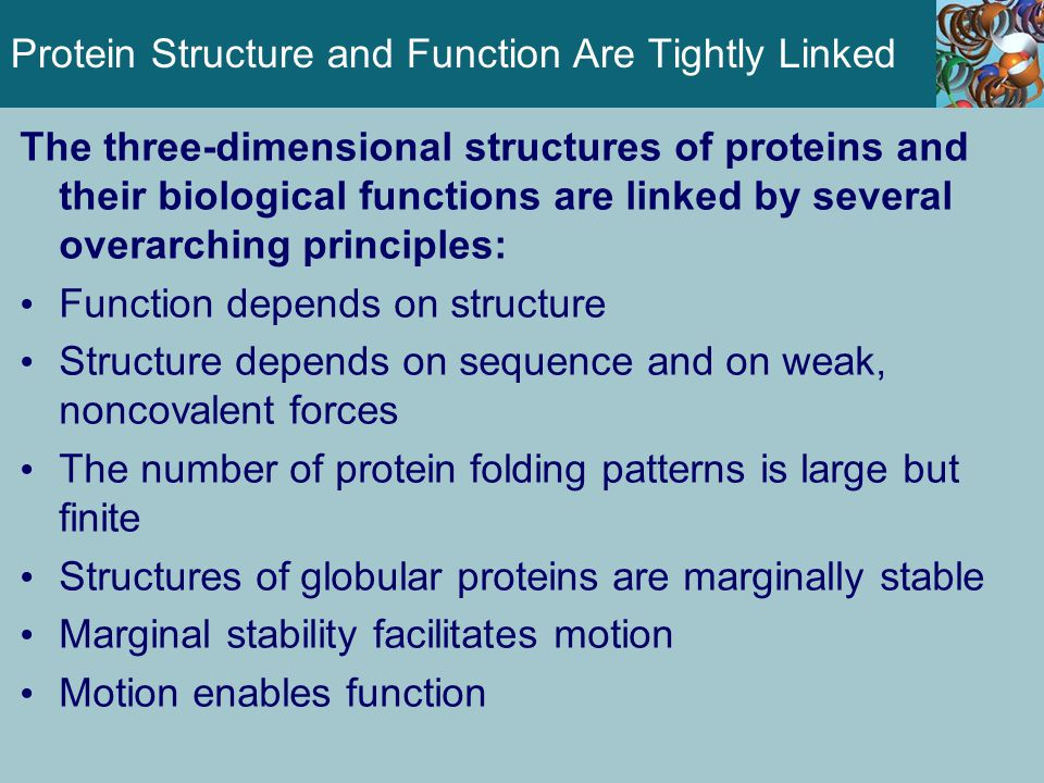 Some Proteins Are Intrinsically Unstructured Many proteins exist and function normally in a partially unfolded state These intrinsically unstructured proteins (IUPs) do not possess uniform structural properties but are still essential for cellular function These proteins are characterized by a nearly complete lack of structure and high flexibility IUPs adopt well-defined structures in complexes with their target proteins IUPs are characterized by an abundance of polar residues and a lack of hydrophobic residues