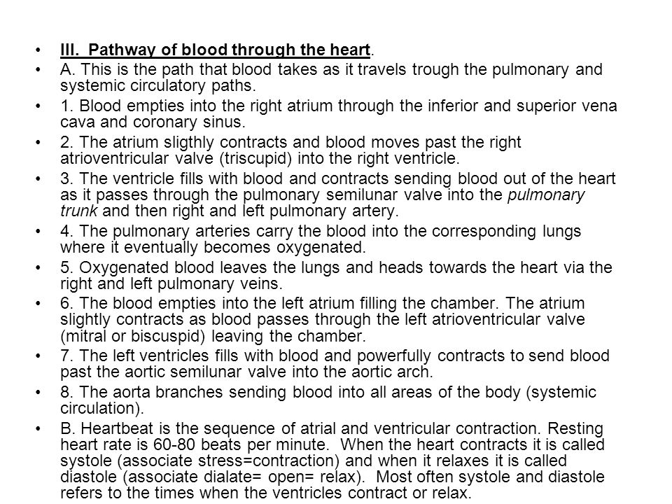III. Pathway of blood through the heart. A.