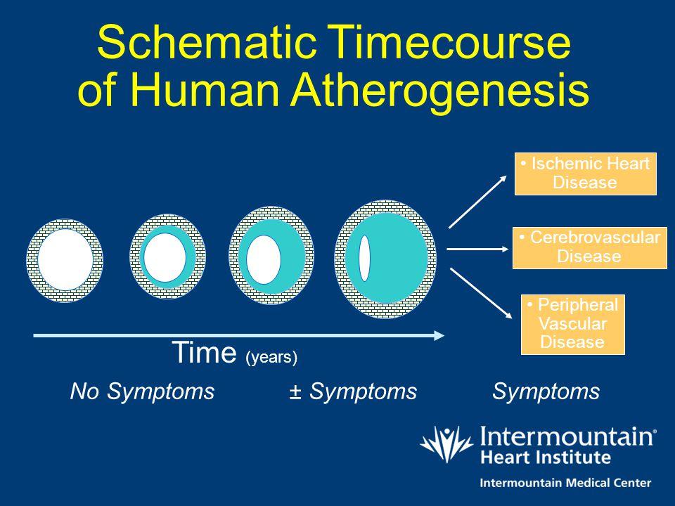 Time (years) No Symptoms ± Symptoms Symptoms Ischemic Heart Disease Cerebrovascular Disease Peripheral Vascular Disease Schematic Timecourse of Human