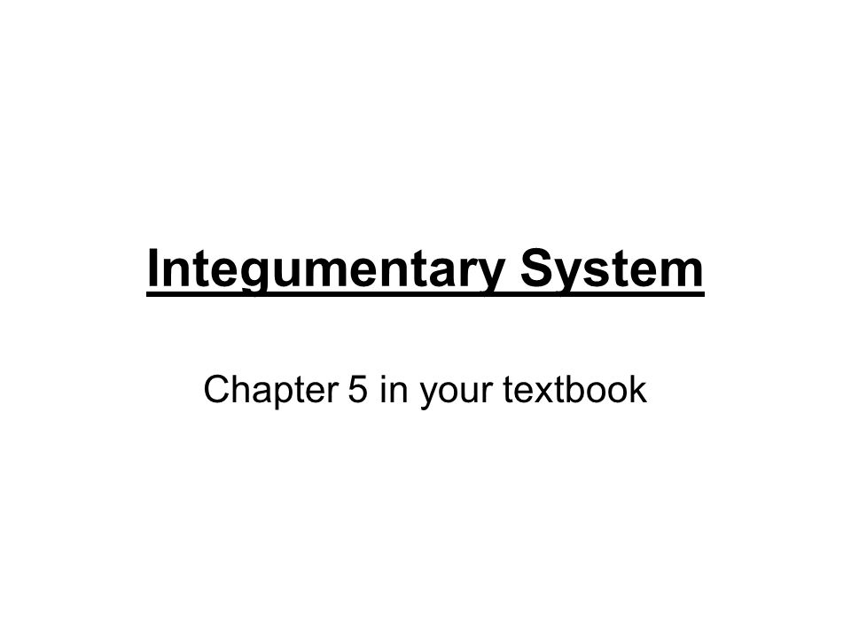 Integumentary System Chapter 5 in your textbook