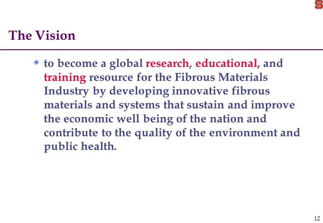 12 The Vision  to become a global research, educational, and training resource for the Fibrous Materials Industry by developing innovative fibrous materials and systems that sustain and improve the economic well being of the nation and contribute to the quality of the environment and public health.