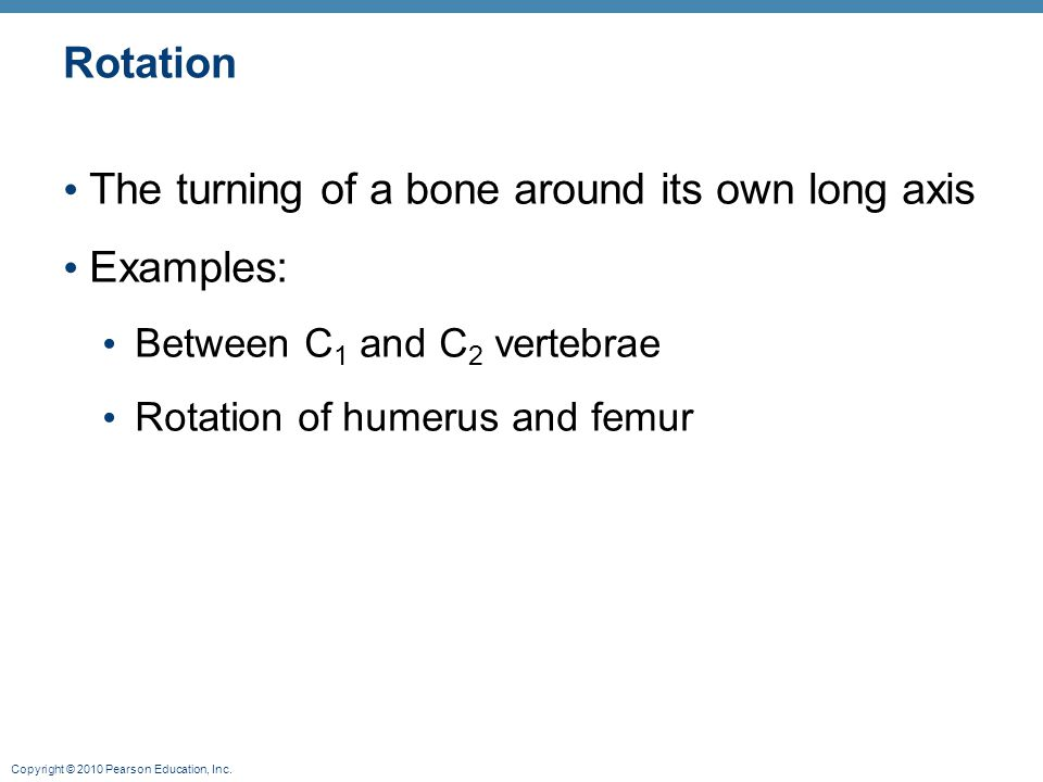 Copyright © 2010 Pearson Education, Inc. Rotation The turning of a bone around its own long axis Examples: Between C 1 and C 2 vertebrae Rotation of h