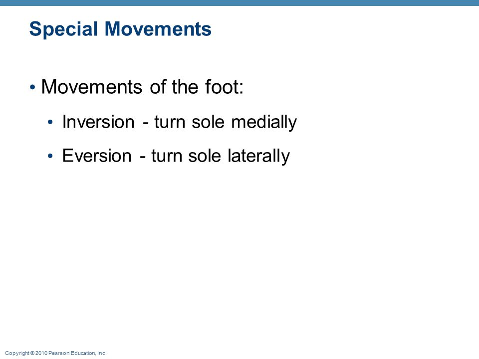 Copyright © 2010 Pearson Education, Inc. Special Movements Movements of the foot: Inversion - turn sole medially Eversion - turn sole laterally
