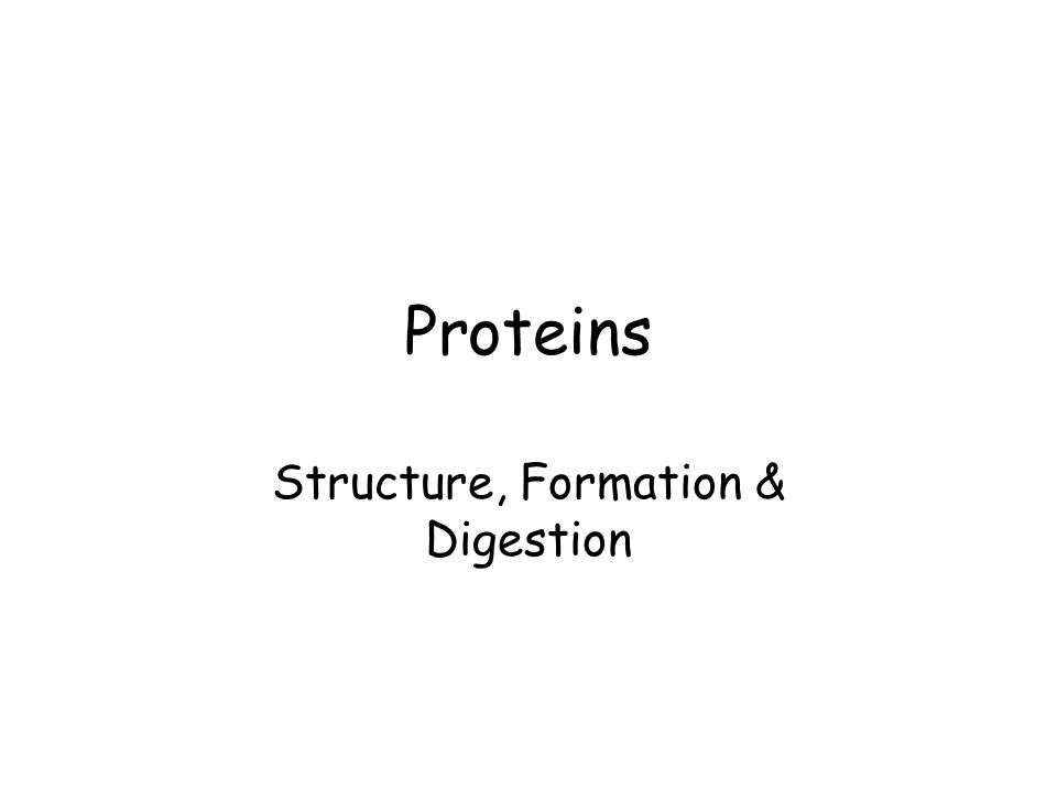 Proteins Structure, Formation & Digestion