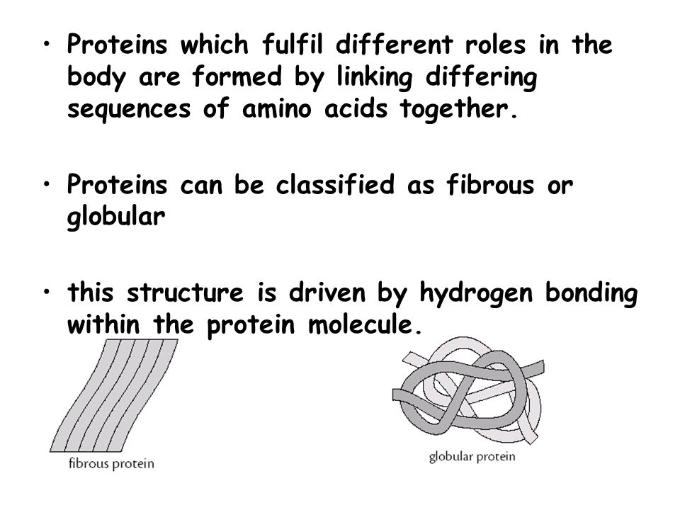 Proteins which fulfil different roles in the body are formed by linking differing sequences of amino acids together.