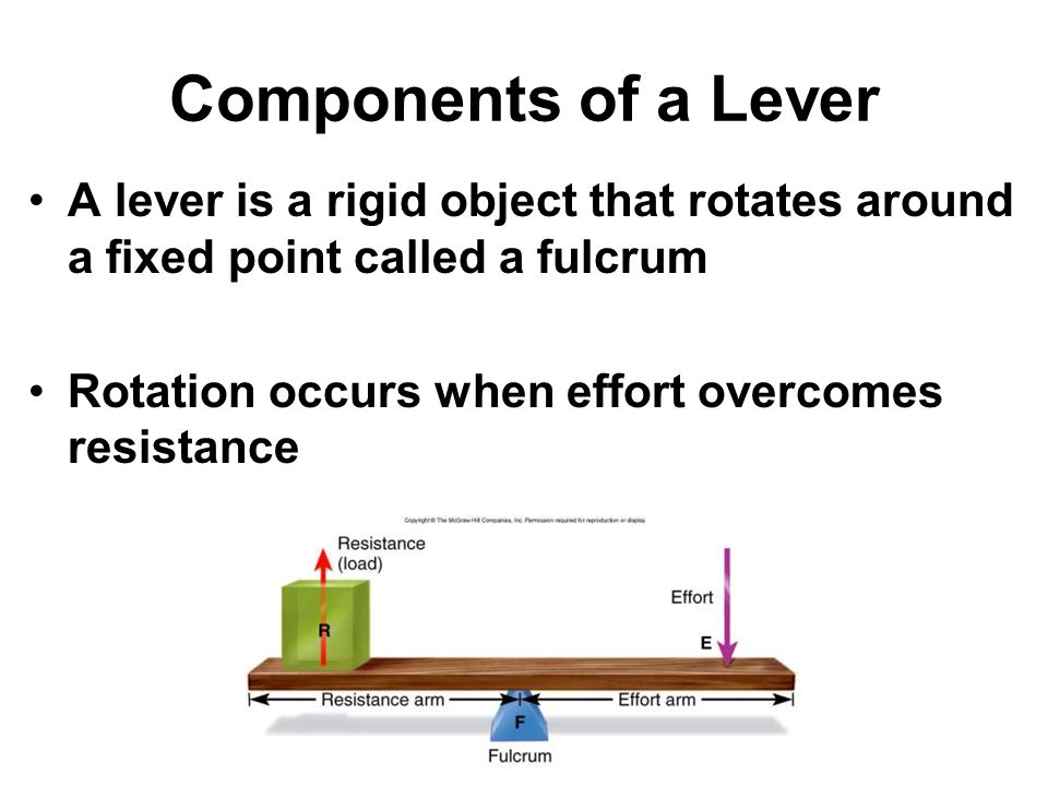 Components of a Lever A lever is a rigid object that rotates around a fixed point called a fulcrum Rotation occurs when effort overcomes resistance