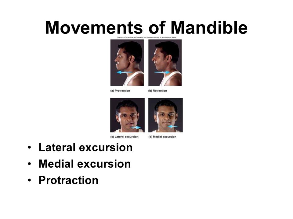 Movements of Mandible Lateral excursion Medial excursion Protraction