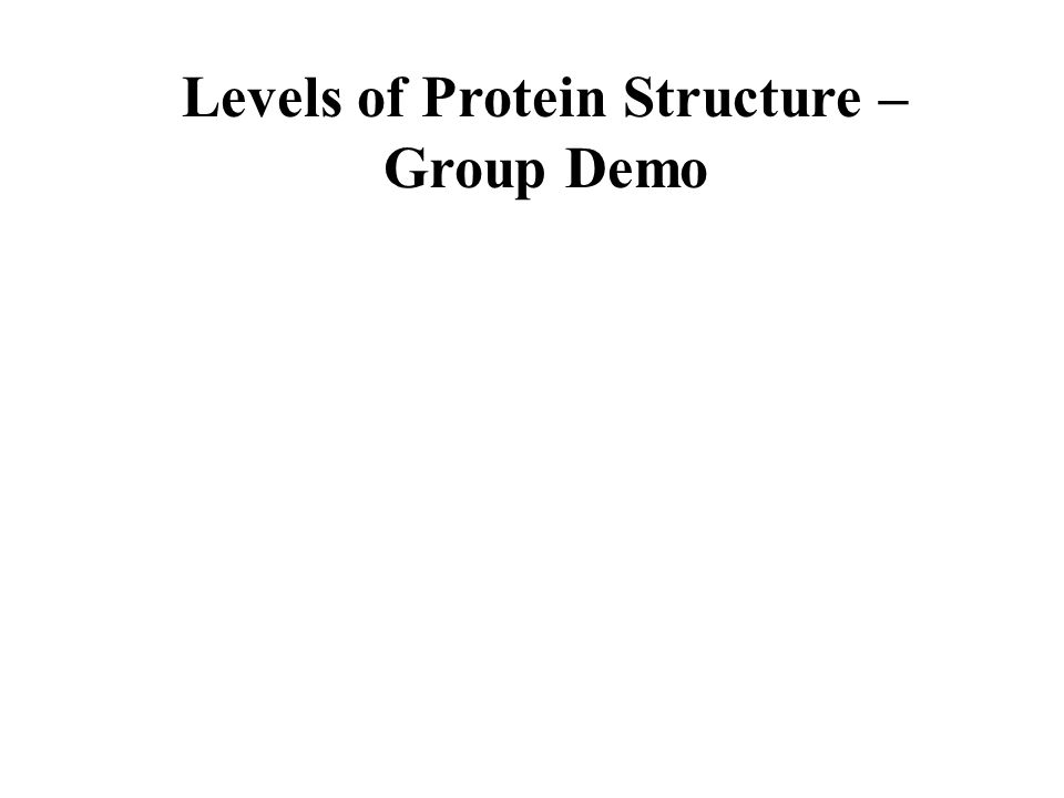 Levels of Protein Structure – Group Demo