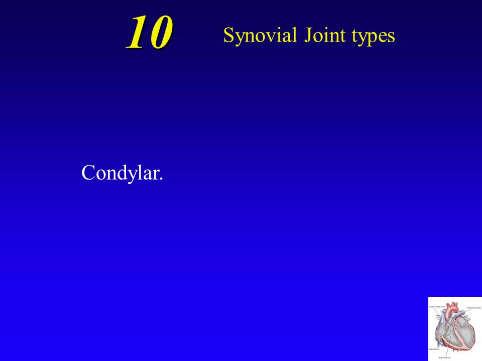 10 Synovial Joint types Which type of synovial joint is described as an oval articular face nestling within a depression on the opposing surface?