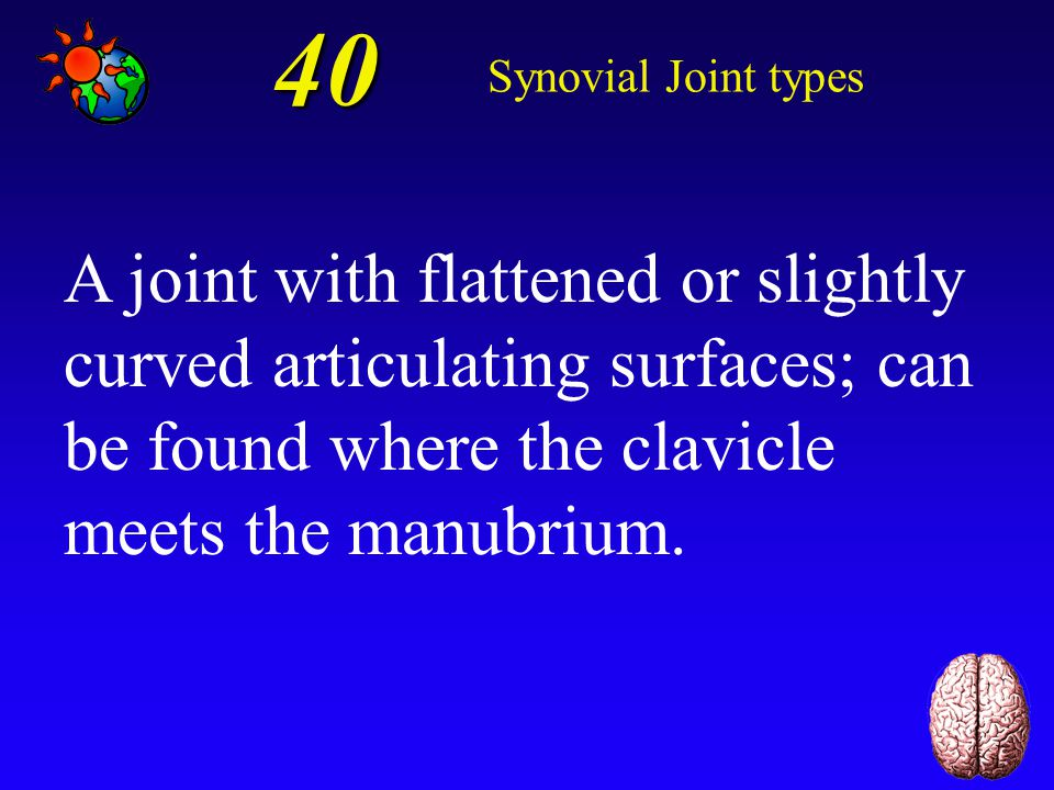 30 Synovial Joint types Hinge joint.