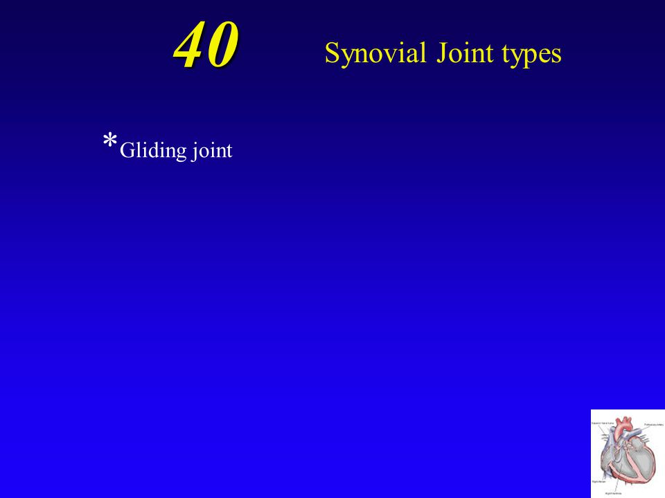 40 Synovial Joint types A joint with flattened or slightly curved articulating surfaces; can be found where the clavicle meets the manubrium.