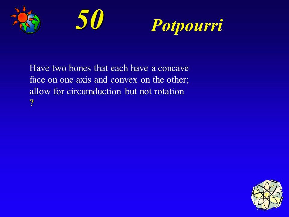 40 Potpourri *Pivot joints
