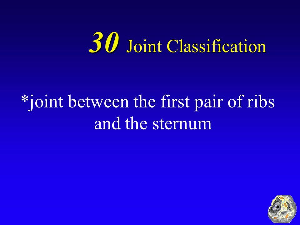 30 30 Joint Classification What is an example of a cartilaginous/synchondrosis joint?