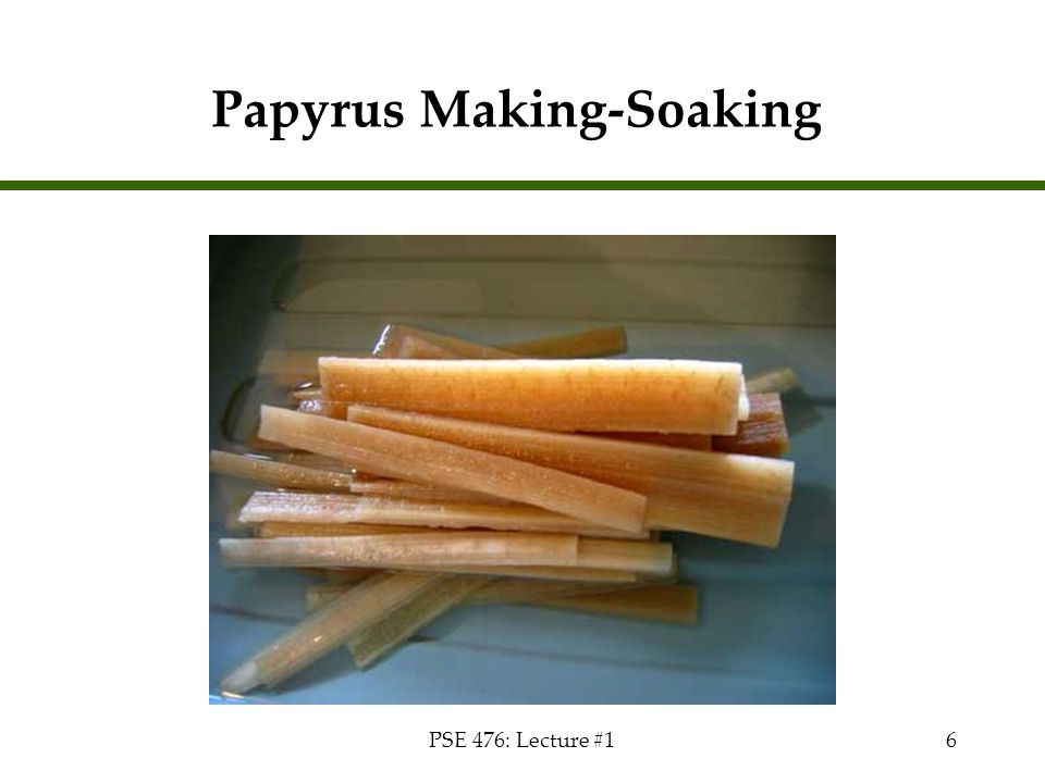 PSE 476: Lecture #16 Papyrus Making-Soaking