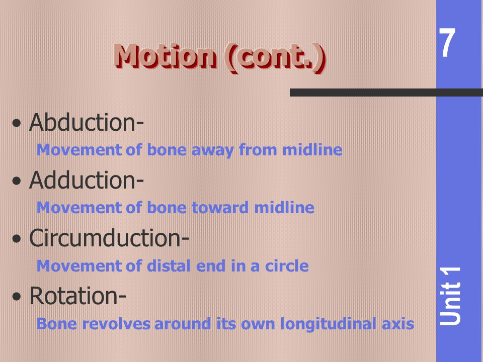7 Unit 1 Abduction- Movement of bone away from midline Adduction- Movement of bone toward midline Circumduction- Movement of distal end in a circle Rotation- Bone revolves around its own longitudinal axis