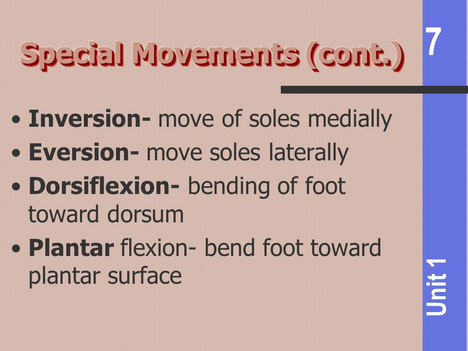 7 Unit 1 Inversion- move of soles medially Eversion- move soles laterally Dorsiflexion- bending of foot toward dorsum Plantar flexion- bend foot toward plantar surface