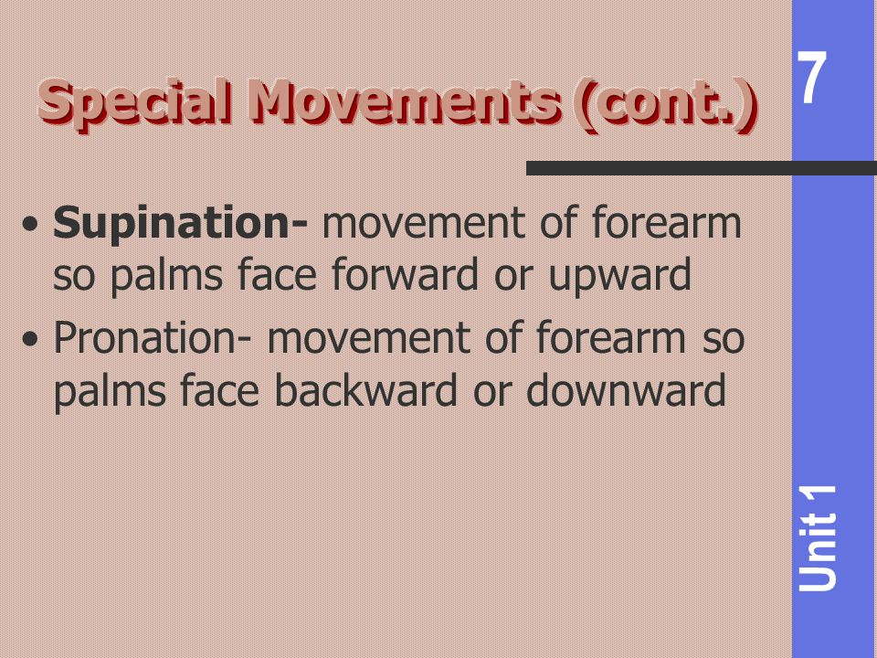 7 Unit 1 Supination- movement of forearm so palms face forward or upward Pronation- movement of forearm so palms face backward or downward