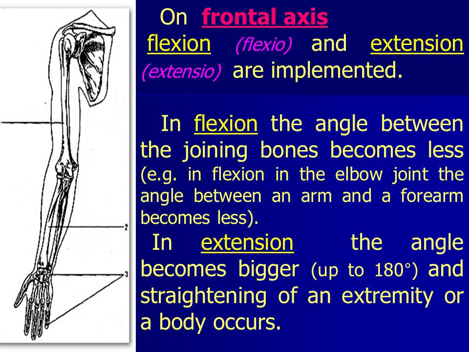 On frontal axis flexion (flexio) and extension (extensio) are implemented.