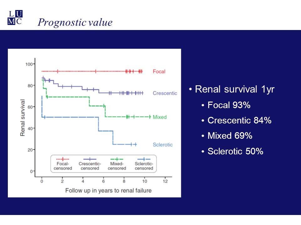 Prognostic value Renal survival 1yr Focal 93% Crescentic 84% Mixed 69% Sclerotic 50%