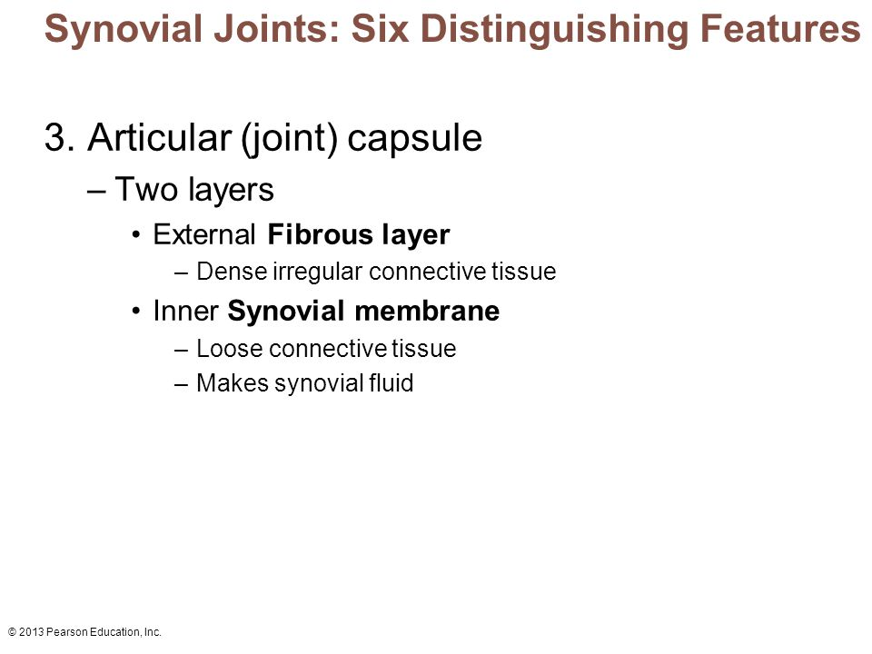 © 2013 Pearson Education, Inc. Synovial Joints: Six Distinguishing Features 3. Articular (joint) capsule –Two layers External Fibrous layer –Dense irr