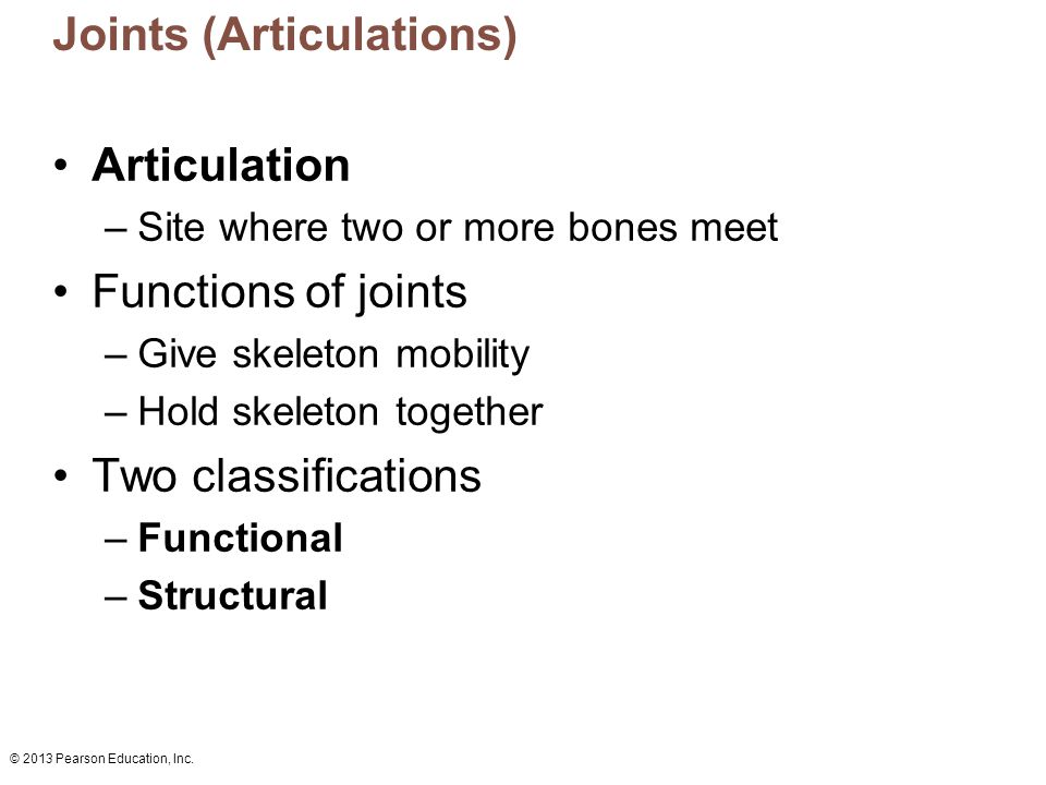 © 2013 Pearson Education, Inc. Joints (Articulations) Articulation –Site where two or more bones meet Functions of joints –Give skeleton mobility –Hol