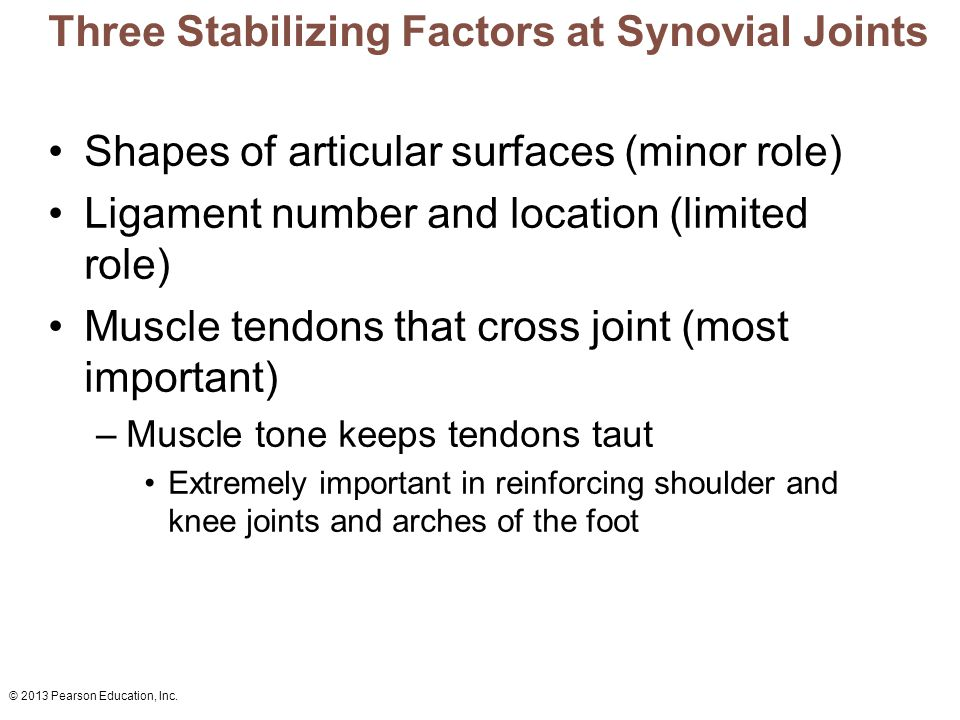 © 2013 Pearson Education, Inc. Three Stabilizing Factors at Synovial Joints Shapes of articular surfaces (minor role) Ligament number and location (li