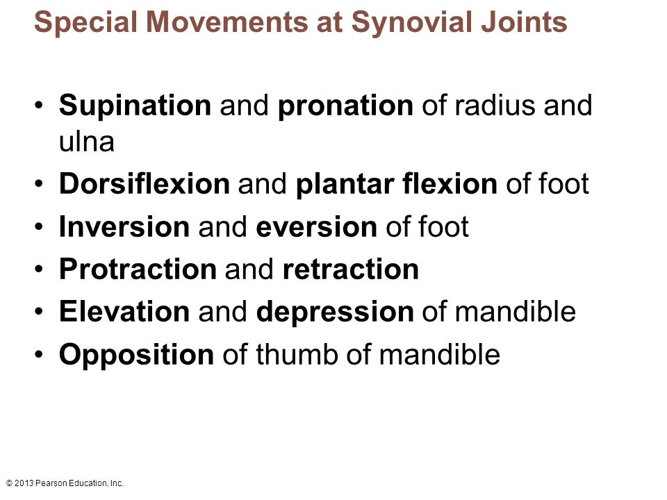 © 2013 Pearson Education, Inc. Special Movements at Synovial Joints Supination and pronation of radius and ulna Dorsiflexion and plantar flexion of fo