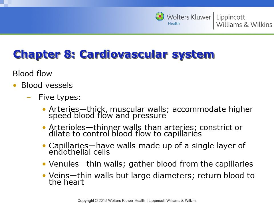Copyright © 2013 Wolters Kluwer Health | Lippincott Williams & Wilkins Chapter 8: Cardiovascular system Blood flow Blood vessels –Five types: Arteries