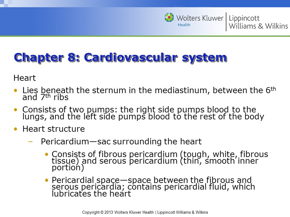 Copyright © 2013 Wolters Kluwer Health | Lippincott Williams & Wilkins Chapter 8: Cardiovascular system Heart Lies beneath the sternum in the mediastinum, between the 6 th and 7 th ribs Consists of two pumps: the right side pumps blood to the lungs, and the left side pumps blood to the rest of the body Heart structure –Pericardium—sac surrounding the heart Consists of fibrous pericardium (tough, white, fibrous tissue) and serous pericardium (thin, smooth inner portion) Pericardial space—space between the fibrous and serous pericardia; contains pericardial fluid, which lubricates the heart
