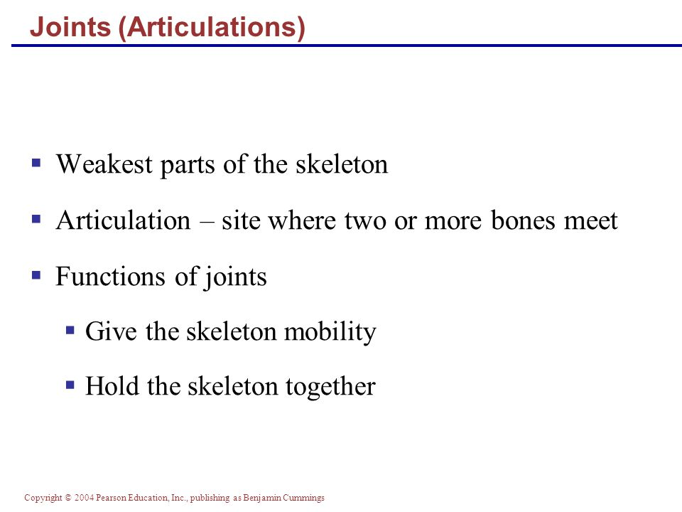 Copyright © 2004 Pearson Education, Inc., publishing as Benjamin Cummings Joints (Articulations)  Weakest parts of the skeleton  Articulation – site