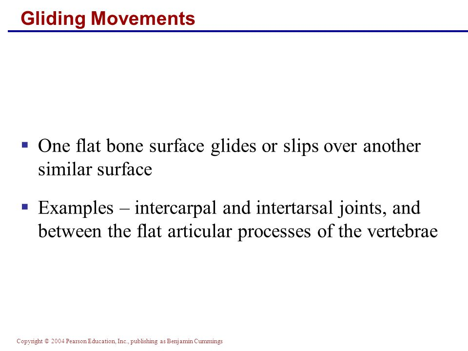 Copyright © 2004 Pearson Education, Inc., publishing as Benjamin Cummings Gliding Movements  One flat bone surface glides or slips over another simil