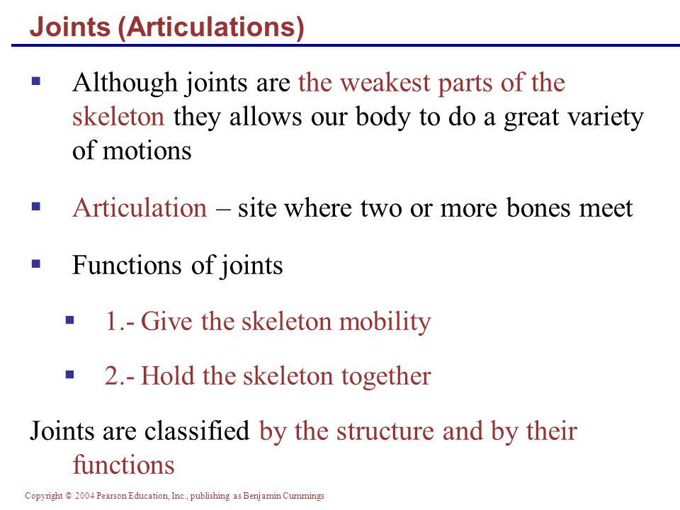 Copyright © 2004 Pearson Education, Inc., publishing as Benjamin Cummings Joints (Articulations)  Although joints are the weakest parts of the skeleton they allows our body to do a great variety of motions  Articulation – site where two or more bones meet  Functions of joints  1.- Give the skeleton mobility  2.- Hold the skeleton together Joints are classified by the structure and by their functions