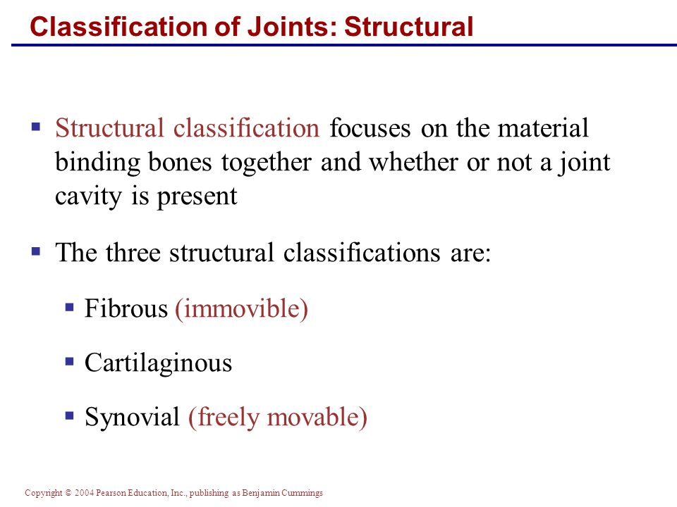 Copyright © 2004 Pearson Education, Inc., publishing as Benjamin Cummings Classification of Joints: Structural  Structural classification focuses on the material binding bones together and whether or not a joint cavity is present  The three structural classifications are:  Fibrous (immovible)  Cartilaginous  Synovial (freely movable)