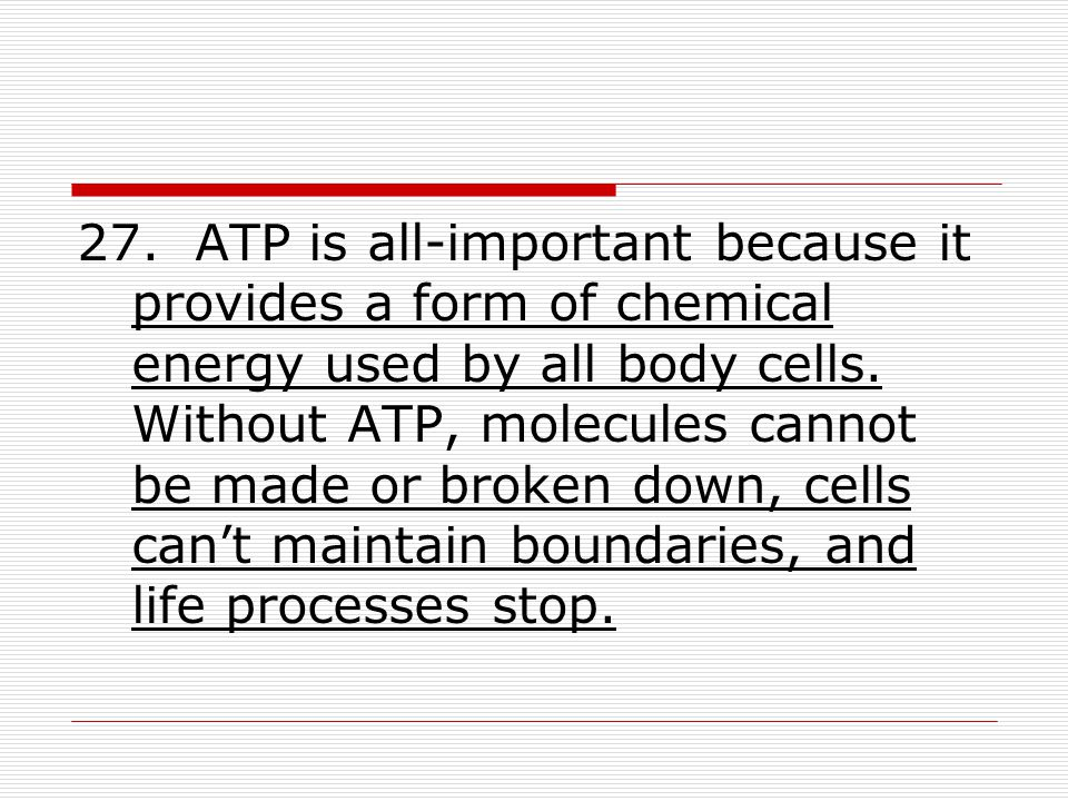 27. ATP is all-important because it provides a form of chemical energy used by all body cells. Without ATP, molecules cannot be made or broken down, c
