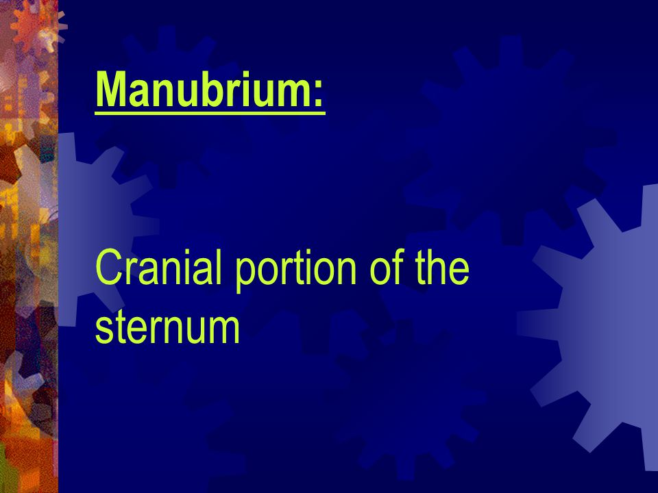 Sequestrum: Piece of dead bone that is partially or fully detached from the surrounding healthy bone