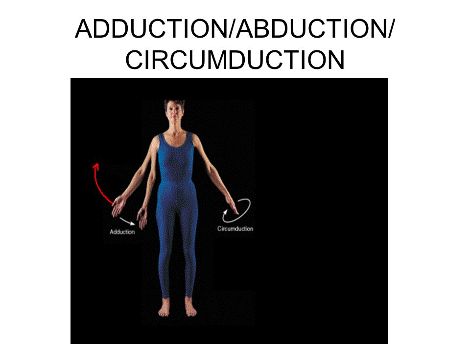 ADDUCTION/ABDUCTION/ CIRCUMDUCTION