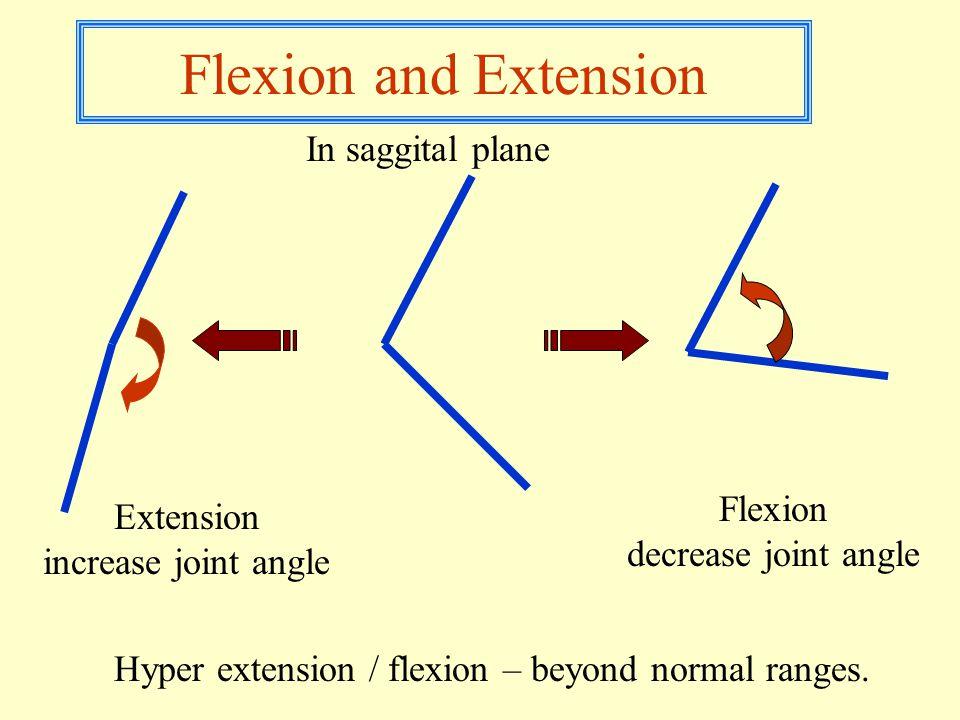 Flexion and Extension Flexion decrease joint angle Extension increase joint angle In saggital plane Hyper extension / flexion – beyond normal ranges.