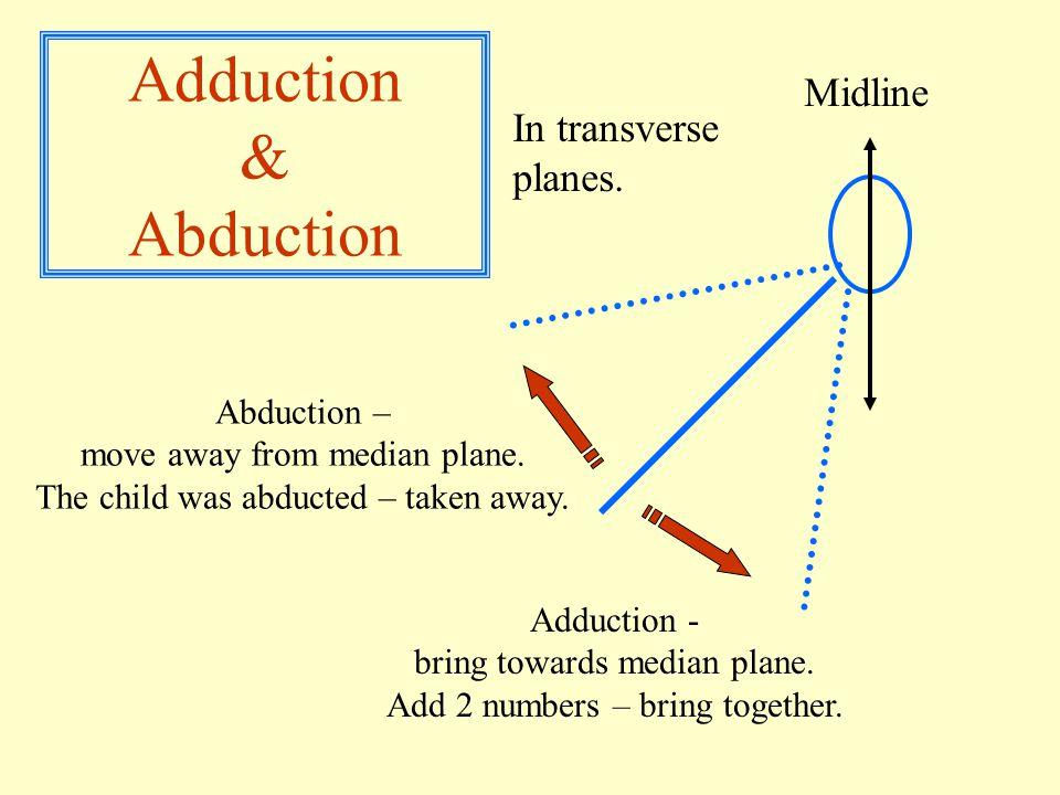Adduction & Abduction Midline Adduction - bring towards median plane.