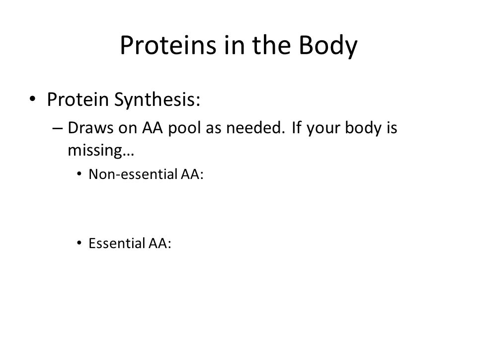 Proteins in the Body Protein Synthesis: – Draws on AA pool as needed.
