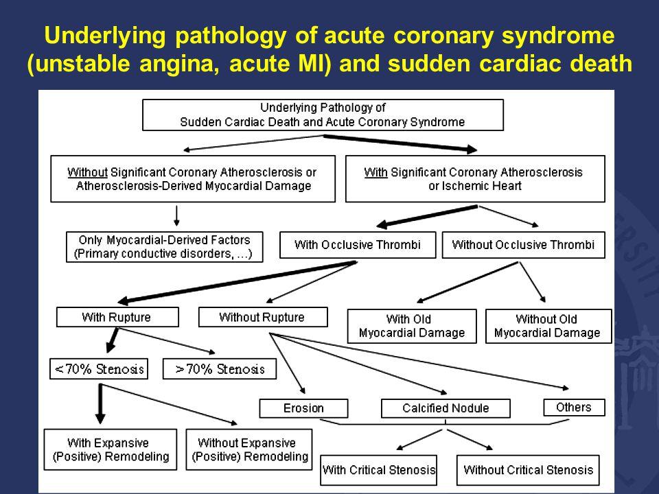 Underlying pathology of acute coronary syndrome (unstable angina, acute MI) and sudden cardiac death