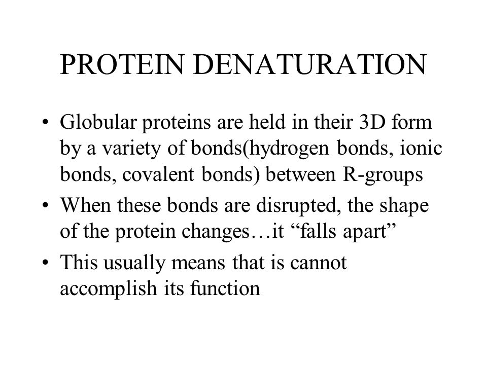 PROTEIN DENATURATION Globular proteins are held in their 3D form by a variety of bonds(hydrogen bonds, ionic bonds, covalent bonds) between R-groups When these bonds are disrupted, the shape of the protein changes…it falls apart This usually means that is cannot accomplish its function