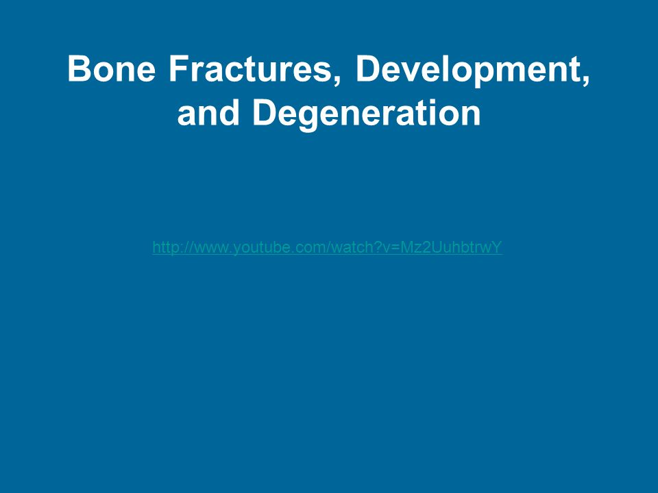 Bone Fractures, Development, and Degeneration http://www.youtube.com/watch v=Mz2UuhbtrwY