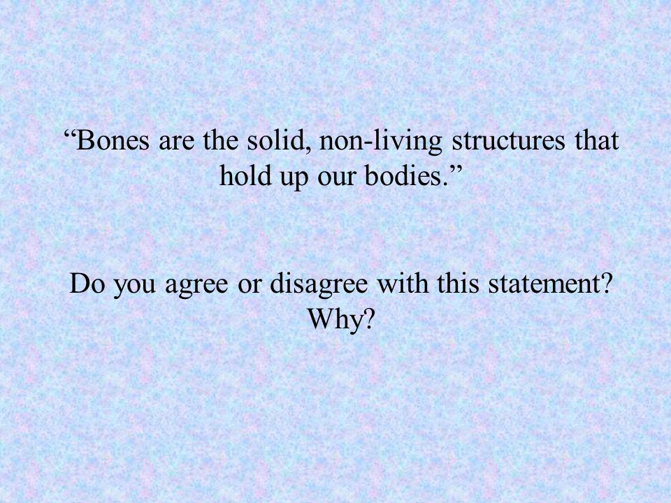 """Bones are the solid, non-living structures that hold up our bodies."" Do you agree or disagree with this statement? Why?"