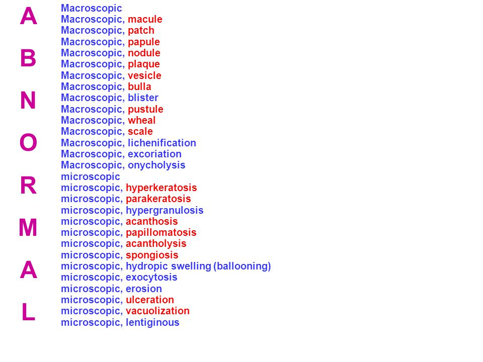 Macroscopic Macroscopic, macule Macroscopic, patch Macroscopic, papule Macroscopic, nodule Macroscopic, plaque Macroscopic, vesicle Macroscopic, bulla