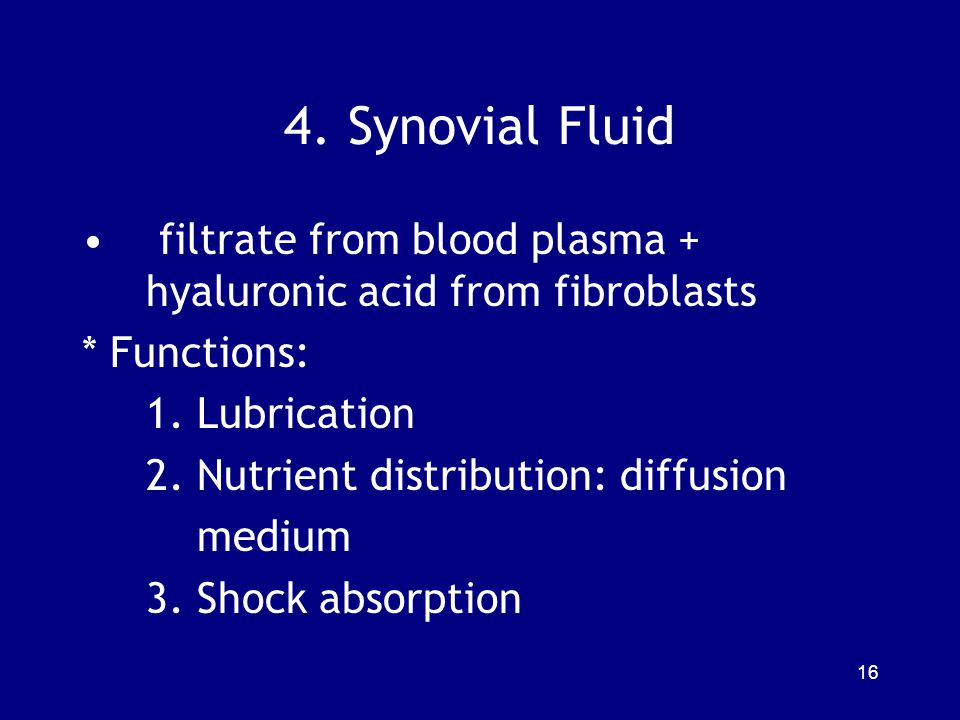 4.Synovial Fluid filtrate from blood plasma + hyaluronic acid from fibroblasts * Functions: 1.