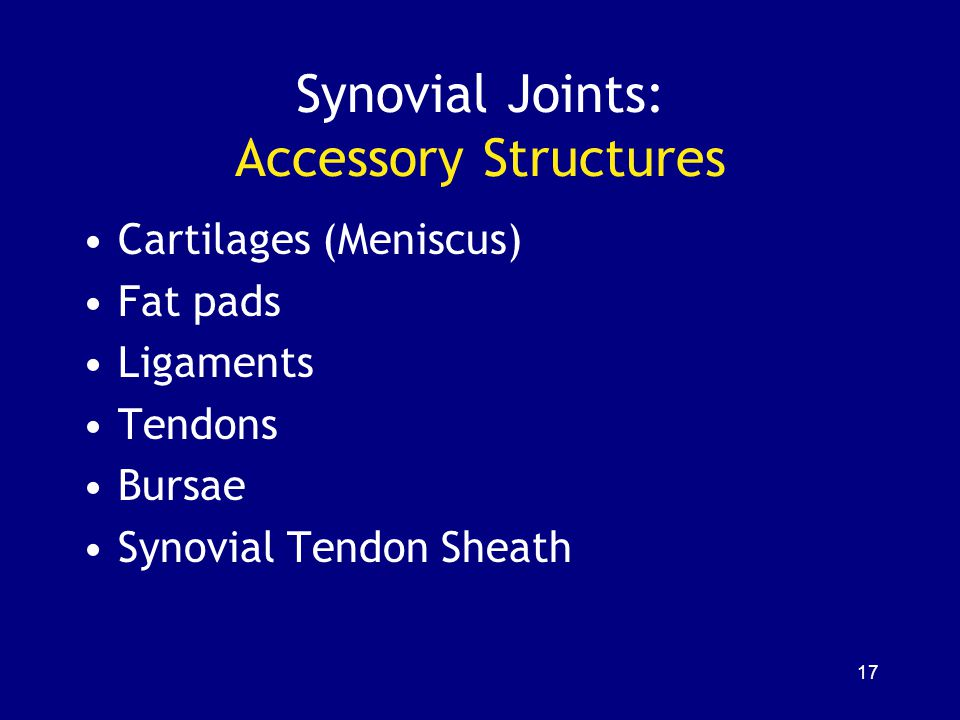 Synovial Joints: Accessory Structures Cartilages (Meniscus) Fat pads Ligaments Tendons Bursae Synovial Tendon Sheath 17