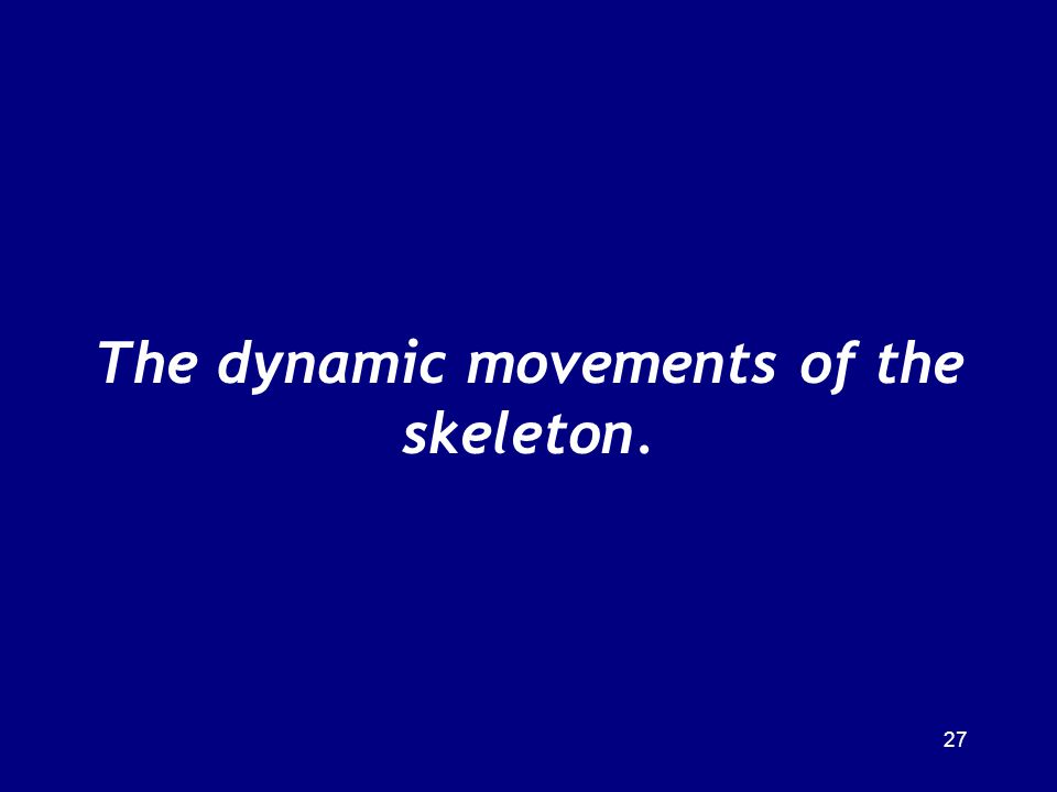 The dynamic movements of the skeleton. 27